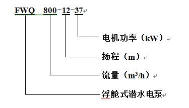 FWQ抗旱泵_型号.jpg